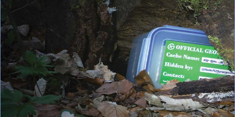 Versteckter Geocache unter Blättern