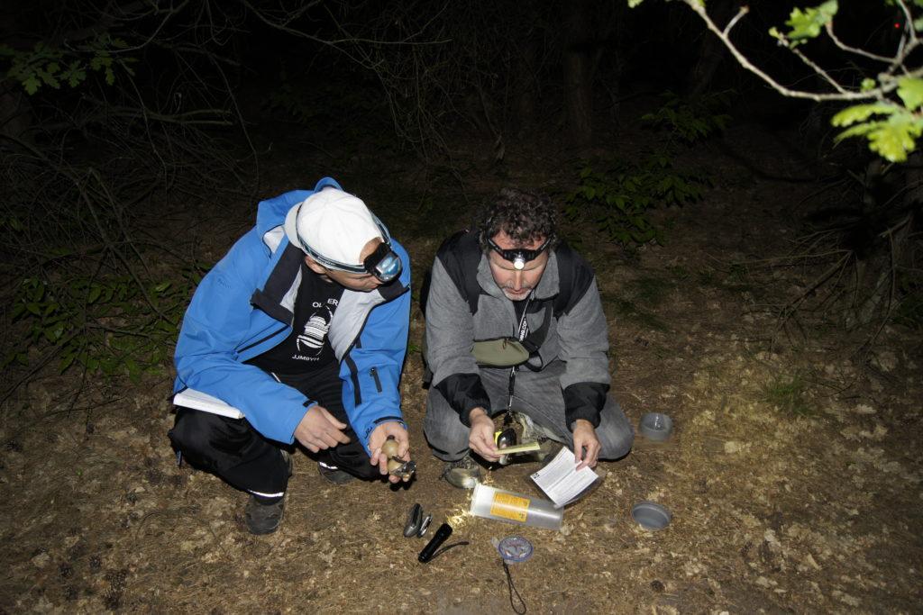 Zwei Personen lösen nachts einen Geocache