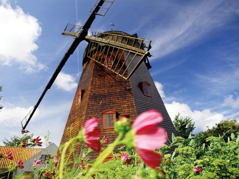 Alte Mühle in einer Blumenwiese