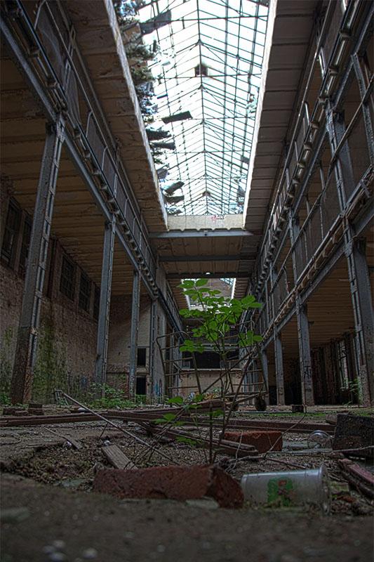 Halle Lost Place Union Maschinenfabrik